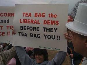 tea-bag-dems